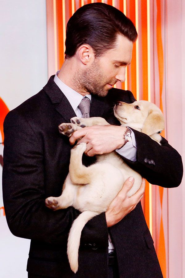 Adam Levine + a puppy = love